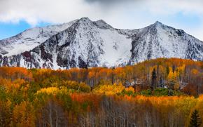 materias complementarias - montaas beckwith, Kebler Pass, Colorado