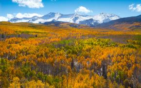 todos los colores del otoo, Kebler Pass, Colorado