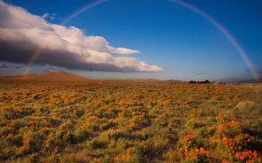 rainbow country - antelope valley, tecachapi mountains, ca