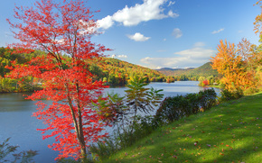 framed by color, autumn, vermont