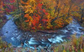 curva de herradura en otoo, Vermont, EE.UU.