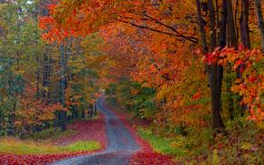 strade di fuoco, Vermont, Stati Uniti d'America