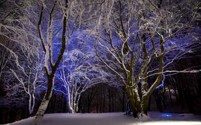 nieve y azulado, Vaaland, stavanger, rogaland fylke, Noruega