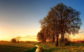 estrada, pr do sol, paisagem, rvores