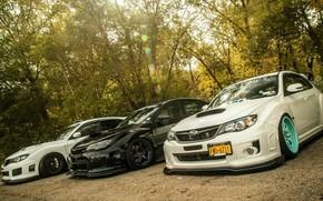 Auto, Impreza, Subaru, Subaru, auto, macchinario