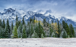 Primera nieve, Antracita, Alberta, Canadá
