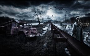paysage, Pripyat, Tchernobyl, Apocalypse, Wolves, remplir, artefact, harceleur, route, automne, SPRING, harceleur, Zil, équipement, tempête, ciel, oiseaux, herbe, Machine, catcher