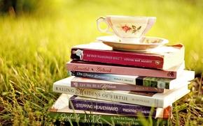cup, saucer, grass, Books
