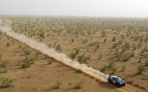 blu, deserto, Rally, polvere, Car, Giorno, Volkswagen, Sport, jeep, SUV, macchina