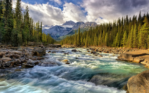 Mountains, forest, river, stones, FLOW