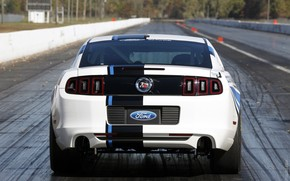 road, LUGGAGE, white, ford