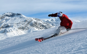 Freeride, Mountains, snow, forest, skiing