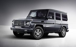 Mercedes-Benz, G-55, W463