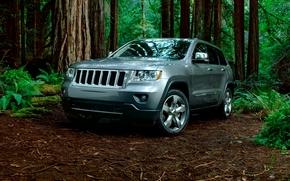 2011, jeep grand cherokee, limitata
