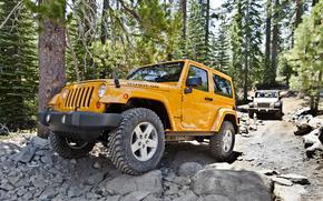 Jeep, Wrangler, Rubicon
