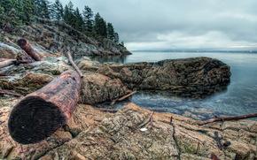 costa, Canadá, Oeste, Vancouver, HDR, naturaleza