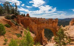 США, Zion, Utah, Природа
