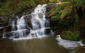 Cora Lynn Cascades, Great Otway National Park, victoria, australia