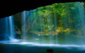 pond, cascata, alberi, foresta, natura