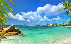 costa, Palms, panorama