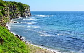 coast, thicket, Rocks