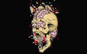detriti, Creatività, esplosione, cranio, disegno, Stampa, spruzzo, gap, Art, cervello, sfondo nero