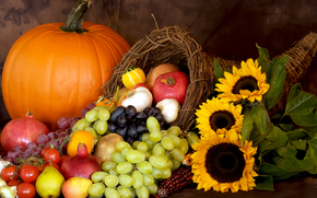 harvest, fruit, vegetables, made dish