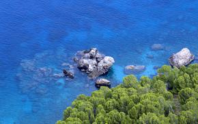 coast, stones, thicket