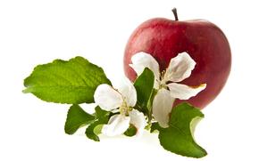 apple, foliage, background