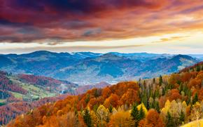 floresta, Montanhas, NUVENS