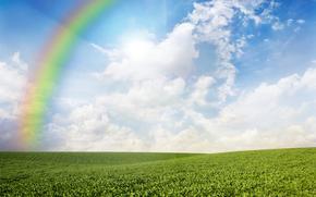 поле, небо, радуга