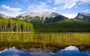 Tranquility, Parco nazionale Jasper, Canada