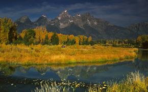 L'image du Grand, Moose, Wyoming, USA