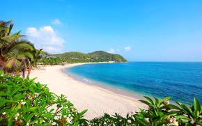 пейзаж, пляж, море