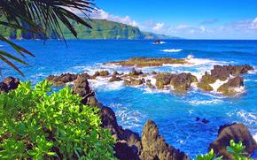 tropici, mare, pietre