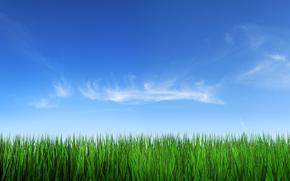 erba, cielo, nuvole