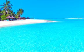 tropici, isola, spiaggia