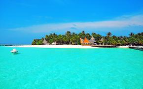 tropici, mare, isola, spiaggia