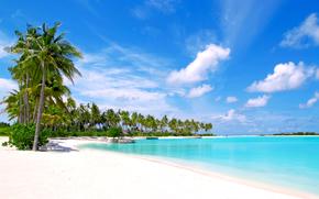 tropici, mare, spiaggia, Maldive