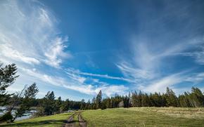 Big Sky, Roche Lake Provincial Park, Kamloops, Colombia Británica, Canadá