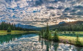 Foresta incontaminata, Bankhead, Parco Nazionale di Banff, Alberta, Canada
