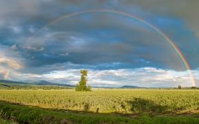 panorama, Arcobaleno, Periferia, Pitt Meadows, British Columbia, Canada