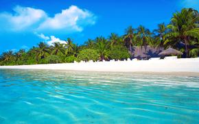tropics, sea, beach