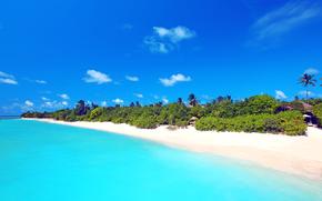 tropici, mare, spiaggia