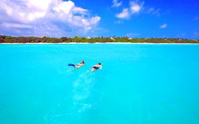 tropici, Maldive, mare, immersioni