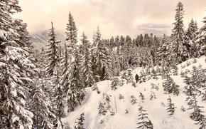 Rakiety śnieżne Cypress, Cyprys, góra, West Vancouver, British Columbia, Kanada