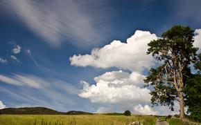 Hill-escursionisti, Perthshire, campagna, Dunkeld, Scozia, GB