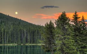 Due Jack Lake, Parco Nazionale di Banff, Alberta, Canada, Banff, Alberta, Canada, lago, foresta, tramonto, alberi