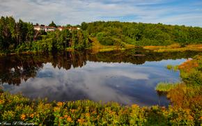 Moncton, Canadá, lago, casa, árvores, floresta, paisagem
