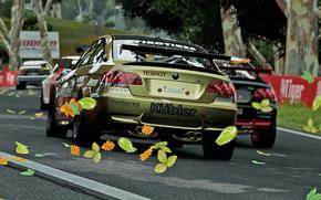 Rally, Samochód, bmw, jesień.